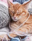 Mikroflanelová detská deka Mačka klbko