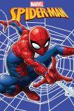 Detská fleecová deka Spiderman web
