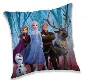 Poťah na vankúšik Frozen 2 in forest